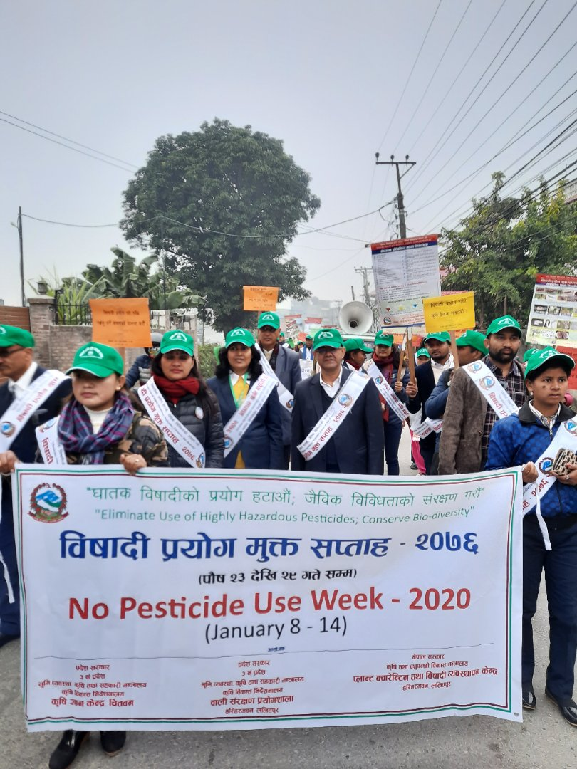 No Pesticide Use Week -2020
